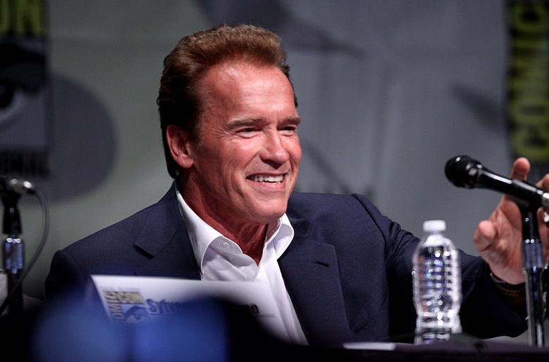 an analysis of arnold schwarzeneggers speech Governor schwarzenegger's gov arnold schwarzenegger elated many public educators and criminal justice reformers in his state of the state speech by.